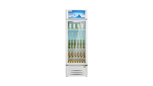 Midea 309 litre show case freezer ( HS-411S)